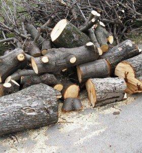 Вырубка кустарников-Спил деревьев