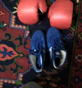 Боксерские перчатки и борцовки