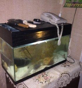 Продам аквариум на 65 литров