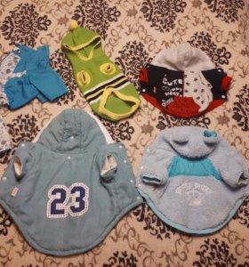 Одежда для собак (5 комплектов )