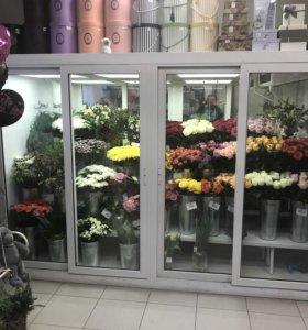 Холодильник (холодильная камера) для цветов