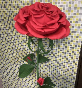 Ростовая роза в подарок