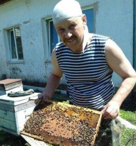 Мед, прополис, цветочную пыльцу