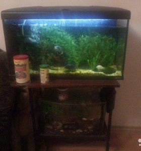 продаются два аквариума