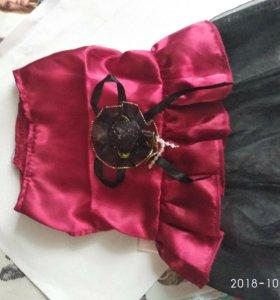 Платье для собаки маленькой породы