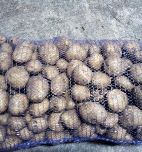 Картофель и овощи с доставкой на дом