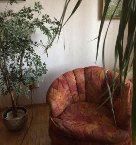 Два кресла для гостиной