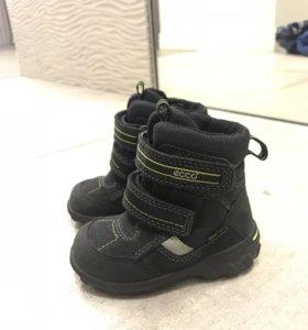 Ботинки Ecco осенние