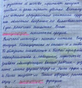 Перепишу от руки лекции, конспекты, любые тексты
