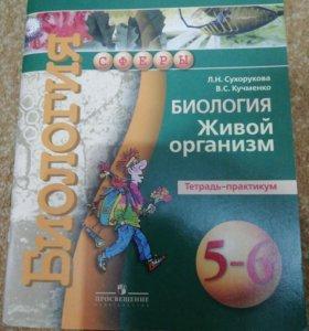 Тетрадь по биологии 5-6 класс