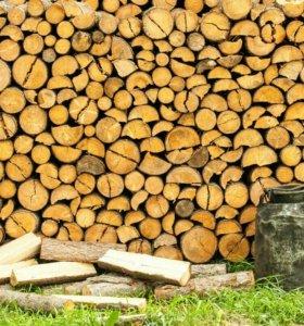 Складу дрова