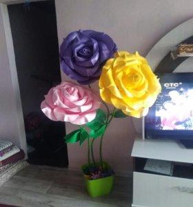 Ростовые цветы разных размеров