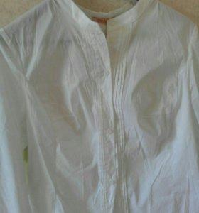 Блузка женская, новая.