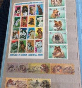 Почтовые марки альбом N 2