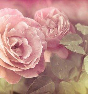 """Фотопанно """"Розы"""" (фотообои) 300*270"""