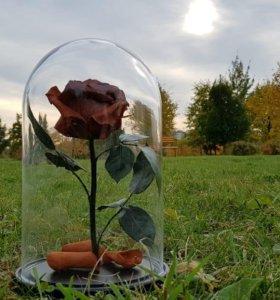 Шоколадная роза в колбе