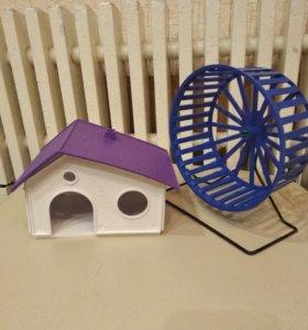 домик и колесо для хомяка