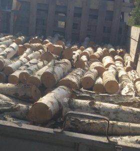 Пильщик дров