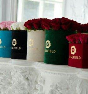 Живые стабилизированные розы