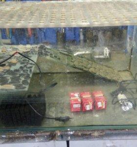 Аквариум для черепахи тритонов