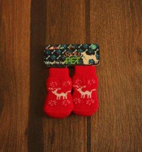 Носочки для маленьких собачек