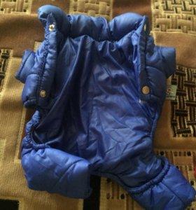 Куртка (для собаки)