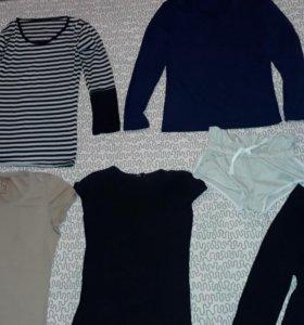 Кофта женская,шорты,лосины