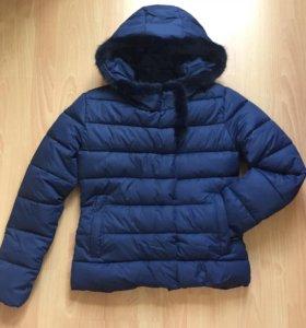 Новая куртка зима( поз.осень)42-44,46-48