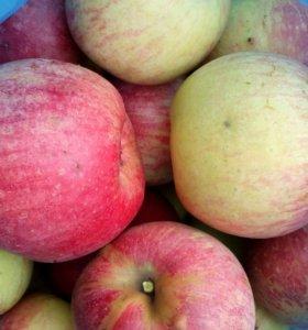 Яблоки , сладкие , сочные , крупные  и боярышник