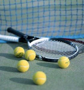 Спарринг по большему теннису