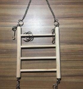 Лестница деревянная для грызуна