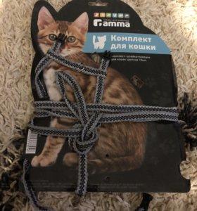 Для кошек поводок,шлейка новая