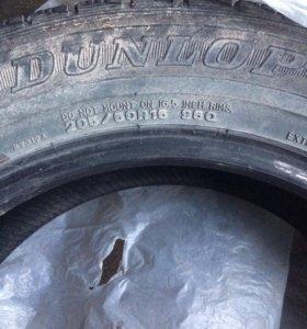 Dunlop graspic DS 3