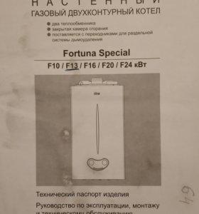 Настенный газовый двухконтурный котел