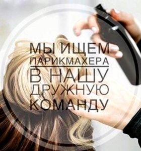 Разыскиваются  парикмахеры