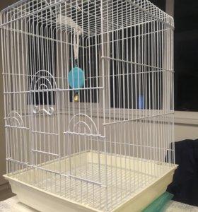 Клетка для птицы.