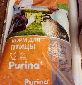 Комбикорм для кур несушек (PURINA)