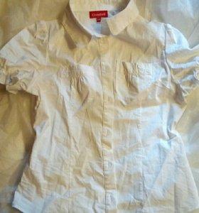 Блуза детская (140)