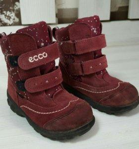 Ботинки Экко 23 размер