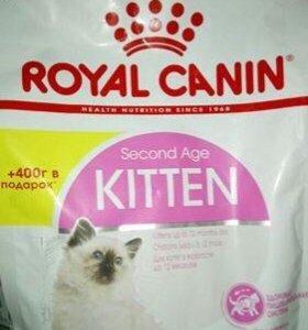 Royal Canin Kitten 400г+400г