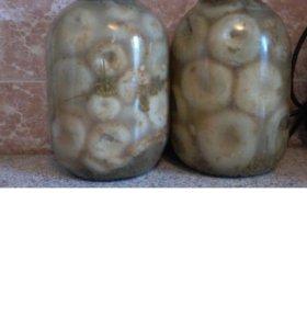 Солёные грибы