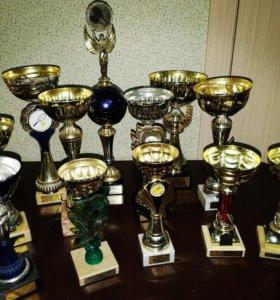 Персональные и групповые тренировки по теннису