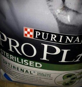 Сухие корма для кошек и собак большие упаковки.