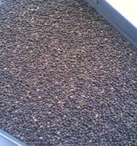 Вика ( на семена, на корм) возможен бартер