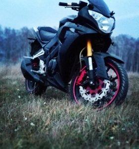 PANTER S2 спорт 250