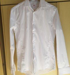 Мужская рубашка Zola