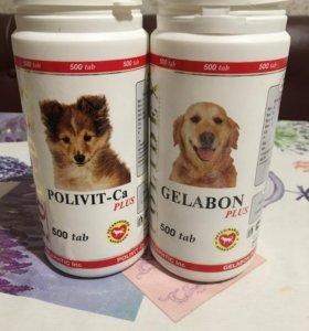 Витамины для собак Gelabon и Polivit