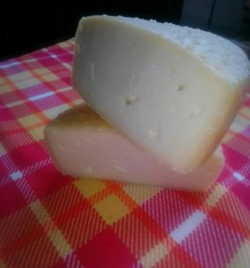 Сыр Качотта, молоко козье, сало.