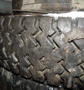 колесо на газик рисунок елочка