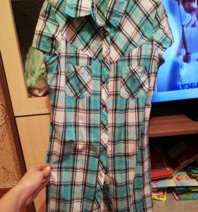 Три рубашки, цена за всё.